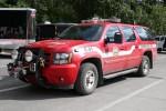 Girdwood - Girdwood Fire Department - Utility 41