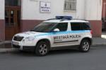 Brezno - Mestská Polícia - FuStW