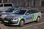 Litoměřice - Policie - FuStW - 9U7 6458