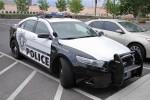 Las Vegas - Las Vegas Metropolitan Police Department - FuStW