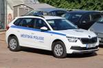 Litoměřice - Městská Policie - FuStW - 1UD 9156