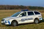 Liberec - Městská Policie - FuStW - 2L6 3866