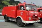 Schwanenstadt - FF - TLF 3500/350 (a.D.)