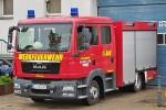 WF Saint-Gobain PAM Deutschland / Neue Halberg-Guss - MLF