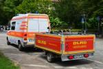 Pelikan Rhein-Neckar 02/91-01