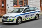 Písek - Městská Policie - FuStW