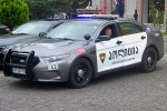 Tbilisi - Patrol Police Department - FuStW - R10