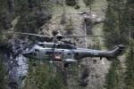 T-318 (c/n: 2340)
