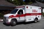 Carmel - Regional Fire Ambulance - RTW 7166