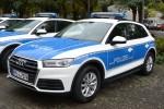 RPL4-7174 - Audi Q5 - FuStW