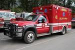 Girdwood - Girdwood Fire Department - Medic 41