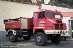 Artenara - Protección Civil – TLF-W (a.D.)