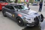 Tbilisi - Patrol Police Department - FuStW - 7500