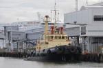 Tallinn - Port of Tallinn - Notfallschlepper PRANGLI (a.D.)
