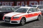 Audi A4 Avant quattro - Binz - NEF