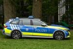 N-PP 3196 - BMW 3er Touring - FuStW - Nürnberg