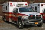 FDNY - EMS - Ambulance 150 - RTW