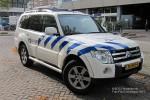Amsterdam-Amstelland - Politie - PKW - 9208