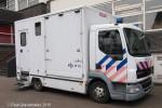 Amsterdam - Politie - LKW - Reiterstaffel