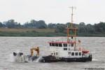 WSA Hamburg - Tonnenleger - Kollmar