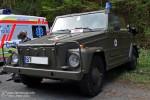 NEF - VW 181 Kurierwagen